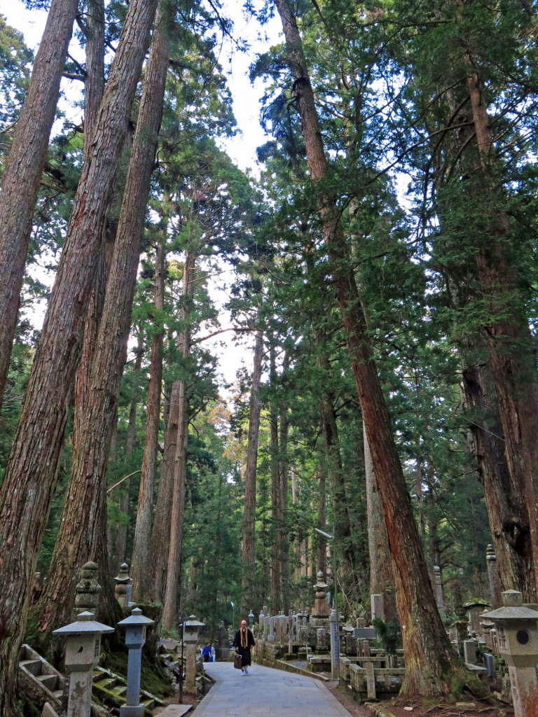 Okunoin Cemetery is over a thousand years old and occupies the space betwee a cedar forest over 600 years old.