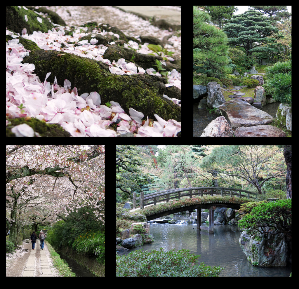 Gotakien Garden at Kyoto's Imperial Palace and cherry blossoms along the Path of the Philosopher.